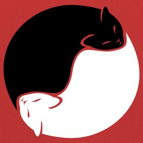 cat yin yang - Cats Photo (31123897) - Fanpop