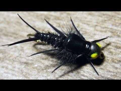 B.H Biot Stonefly Black fly tying instructions by Ruben Martin - YouTube