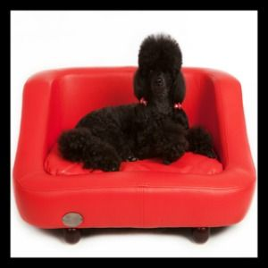 Chester & Wells Richmond Dog Bed Chester & Wells Dog Beds UK