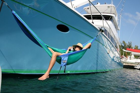 49 Best Koala Images On Pinterest Classic Yachts For