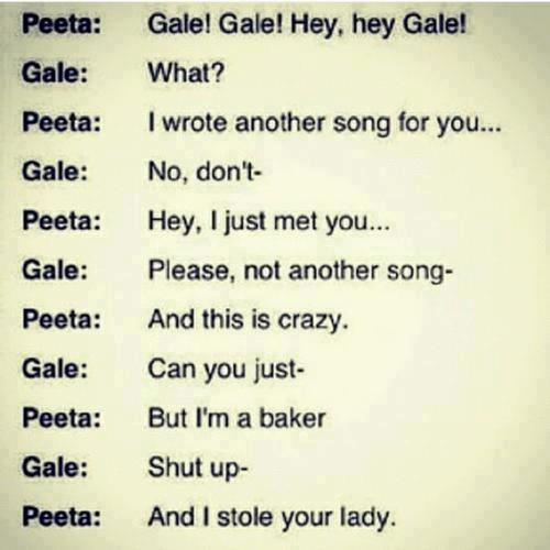 the hunger games - peeta vs gale