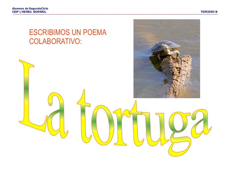 Poema la tortuga by Pilar Garcia Mor via slideshare