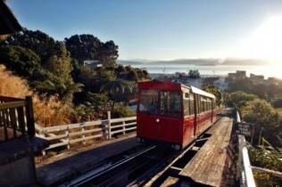 Take the Wellington Cable Car up to the Lookout to take in the view the New Zealand's capital city.
