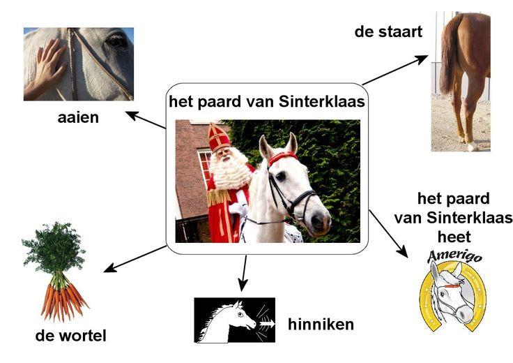 woordenschat paard van sint