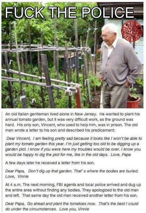 read the amazing story of Vincenzo who helps his Papa from Jail with the garden #FBI #TomatoesLike A Boss, Laugh, Awesome, Funny Stories, The Police, Sons, Gardens, Humor, True Stories