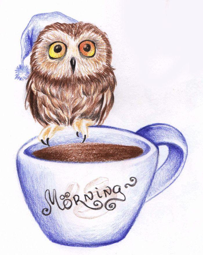 Подруге днем, сова с кофе смешная картинка