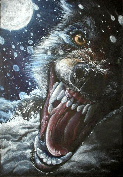 Werewolf Legends from Around the World