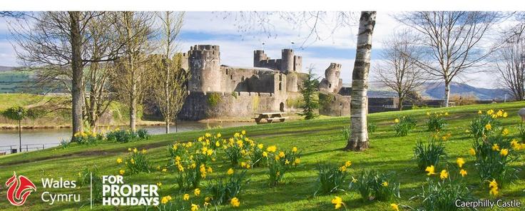 wales cymru site, lots of ideas