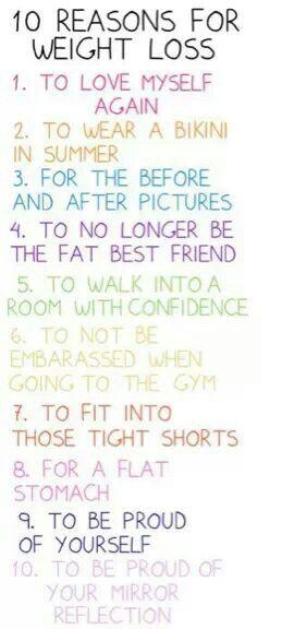 zero belly fat diet meal plan