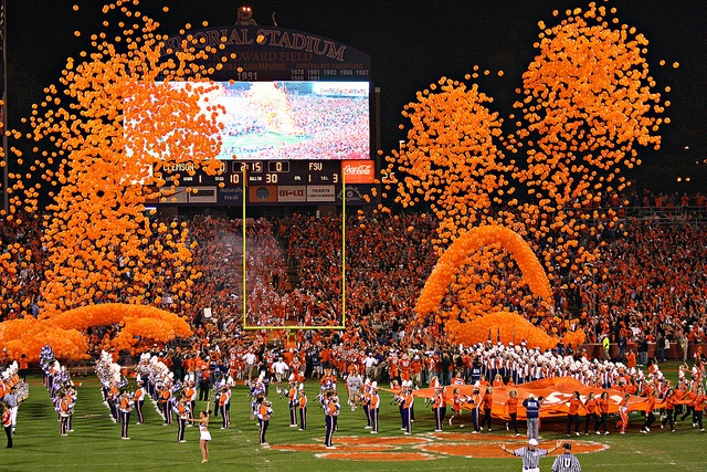 151 Best Images About {Clemson Football} On Pinterest