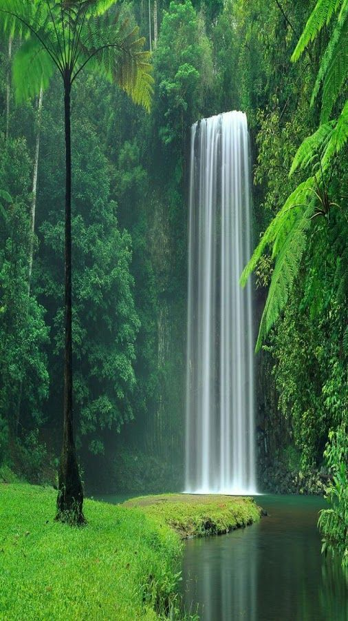 Wow, checkout this #waterfall:Lake Plitvice #Croatia #NationalPark, Croatia