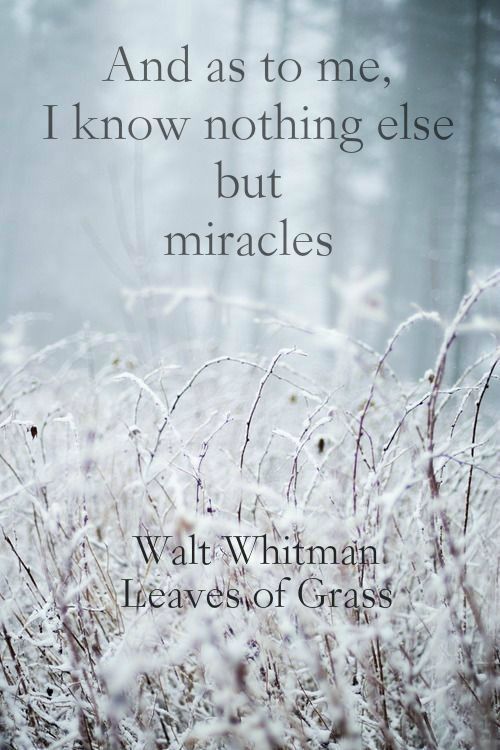 """And as to me, I know nothing else but miracles"" ― Walt Whitman, Leaves of Grass. Remember who you are and where you came from. Only look back when you need self motivation & inspiration. xx YOU CAN & WILL GET THROUGH THIS."