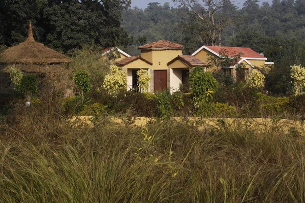 Bandhavgarh National Park - Luxury Hotel  for bookings visit www.wildflowerresort.in