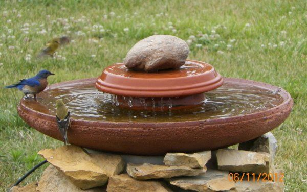Bird Bath Ideas | Daily Kos: Homemade bird bath.