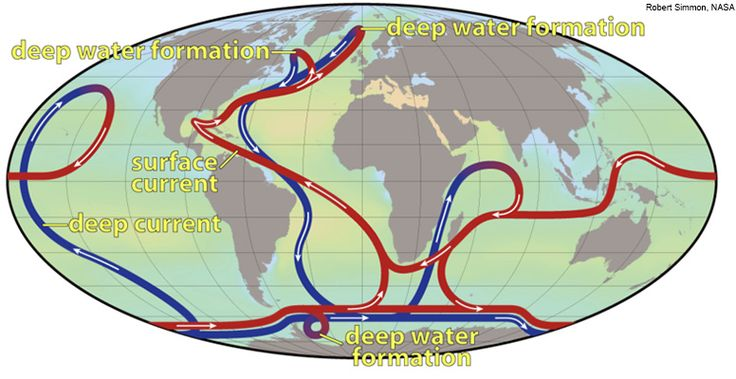 Antarctic currents sustain three-quarters of the Earth's marine life. We should protect them!
