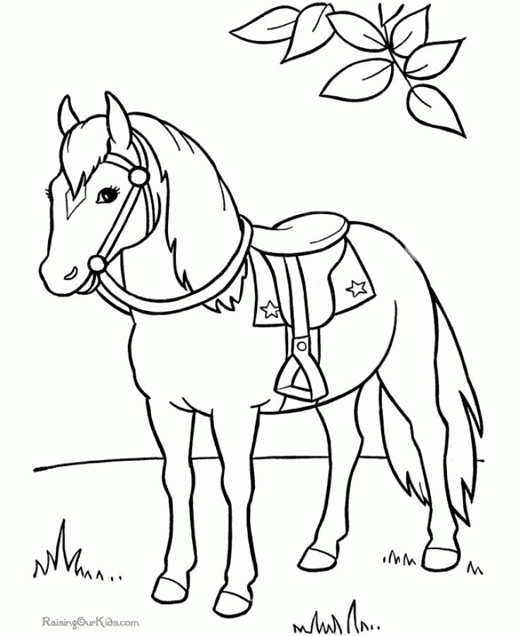 25 unique Horse coloring pages ideas on Pinterest Horse outline