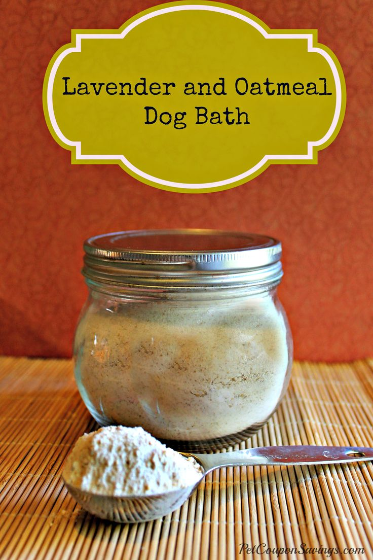 Homemade Lavender and Oatmeal Dog Bath  4 cups oatmeal 4 cups baking soda 3 Tbsp. pure lavender essential oil