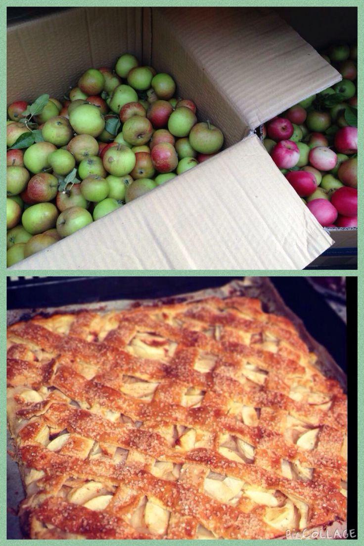 Sønderjysk æblekage af havens efterårsæbler. Tilbehør: cremefraiche med vanilie-sukker
