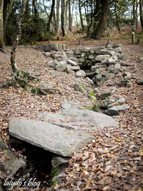 Forêt de Brocéliande  fontaine barenton