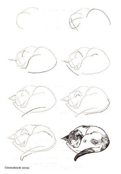 How to draw a sleeping cat                                                                                                                                                                                 Más                                                                                                                                                                                 Más
