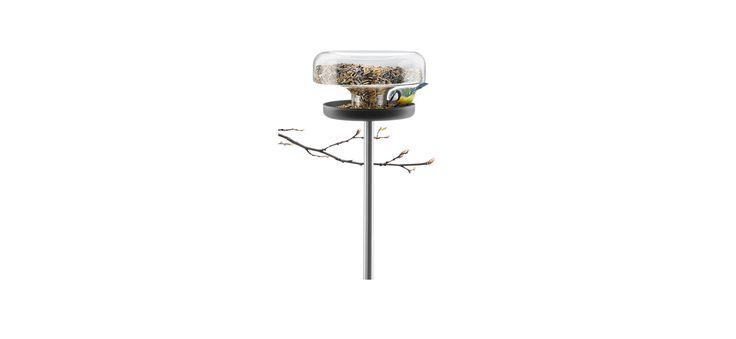Bird feeder table - 571039