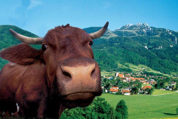 Aschau im Chiemgau | Chiemsee-Alpenland Tourismus GmbH & Co. KG