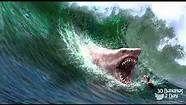 Megalodon Shark Attack - Bing Videos