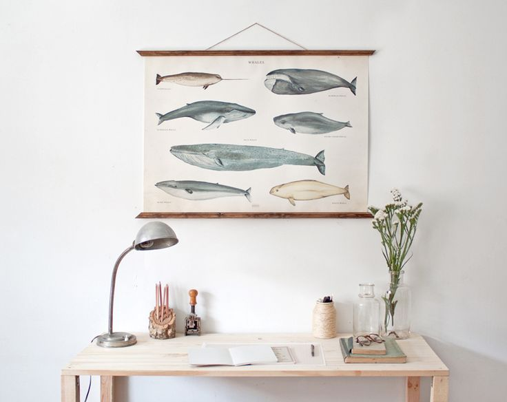 https://flic.kr/p/bWhkZi | Untitled | WHALES POSTER - LARGE!