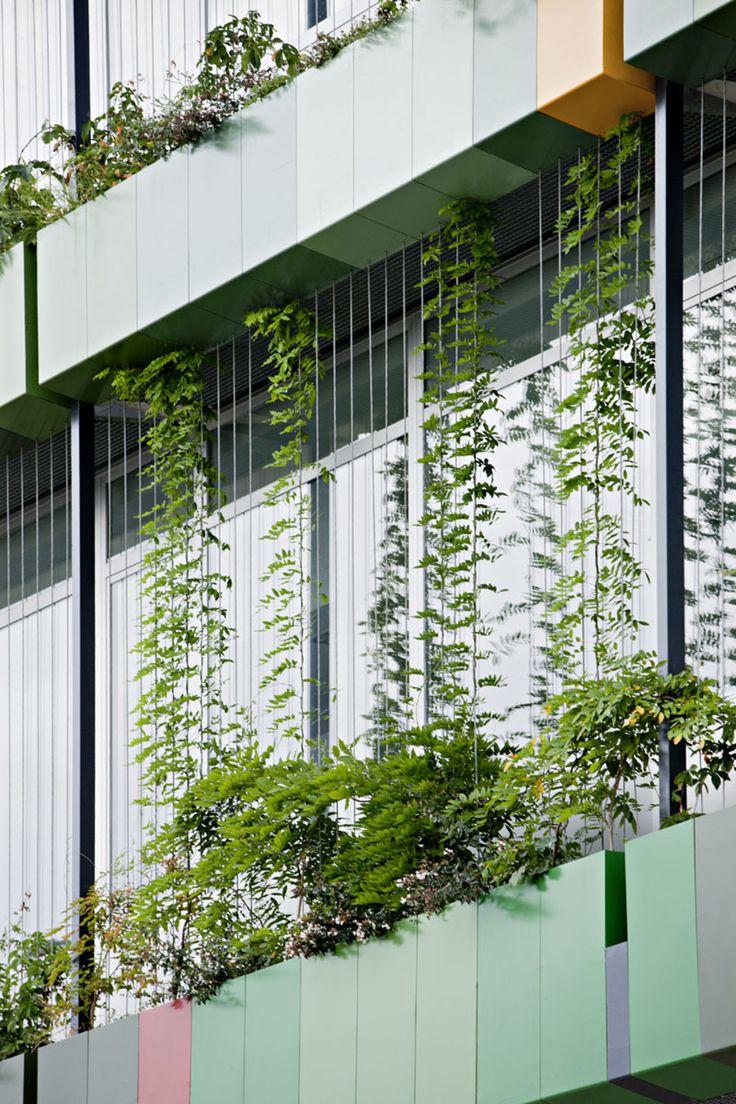 MM-arquitectura, Javier Callejas Sevilla - www.javiercallejas.com · Ampliación del Centro de Investigaciones Biomédicas · Divisare