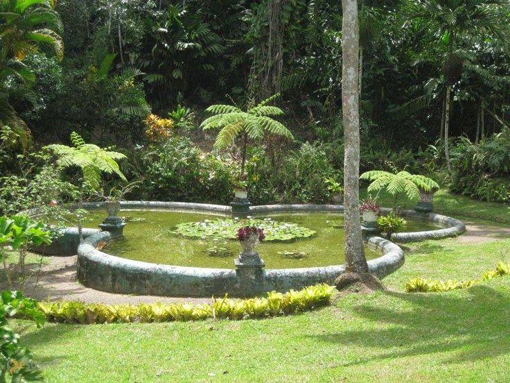 Королевский сад Кэслтон – #Ямайка #Сент_Эндрю #Кингстон (#JM_02) Красивый парк и зоопарк http://ru.esosedi.org/JM/02/1000468966/korolevskiy_sad_kyeslton/