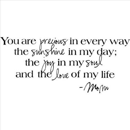 Amazon.com: You Are Precious in Every Way the Sunshine in My Day the Joy in My Soul and the Love of My Life -Mom wall sayings vinyl lettering home decor decal stickers quotes appliques: Home Improvement