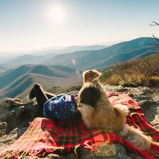 51 Magical Places You And Your Dog Need To Visit In 2016