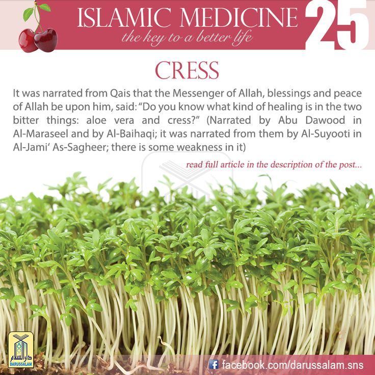 """Al-Kahhal Ibn Tarkhan said, """"It heats, acts as a laxative, expels worms and stimulates the libido. If it is cooked with soups, it cleanses the chest and stops the hair from falling. If it is used as a compress with water and salt, it helps to draw out boils and is beneficial in cases of asthma and difficulty breathing;#DarussalamPublishers #IslamicMedicine #IslamicEBooks #AmazonKindle #KindleStore #BarnesAndNoble"""