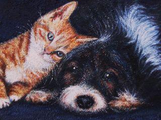 Gatto e Cane ; olio e sabbia su tela; 50×40