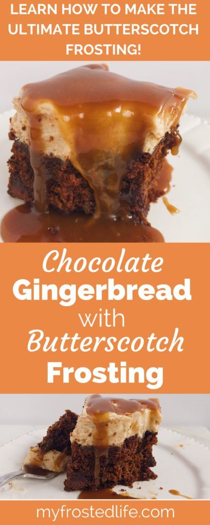 This Chocolate Gingerbread Cake with Butterscotch Frosting is a moist spice cake topped with a decadent cream cheese butterscotch frosting. Learn how to make this easy homemade dessert that is perfect for the holidays or any cold day! Click to get this simple cake recipe and find out how to make the best butterscotch frosting!