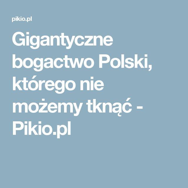 Gigantyczne bogactwo Polski, którego nie możemy tknąć - Pikio.pl