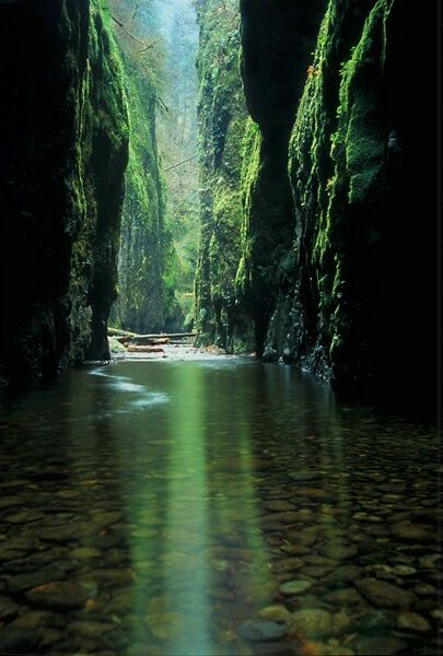 Oneonta Gorge, Oregon The Emerald Canyon- it has 4 waterfalls. #Oregon