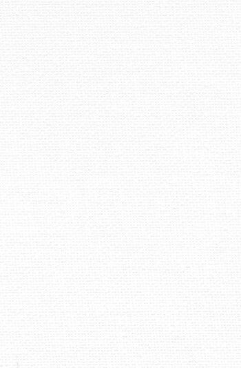 Plain White Wallpaper Iphone X Best 25 Plain White Background Ideas On Pinterest White