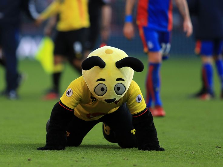 Watford mascot Harry the Hornet captured on video diving behind Crystal Palace winger Wilfried Zaha #watford #mascot #harry #hornet…