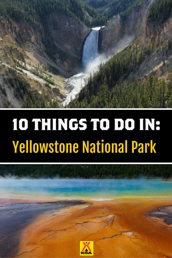 120 best Yellowstone & Grand Teton National Park images on ...