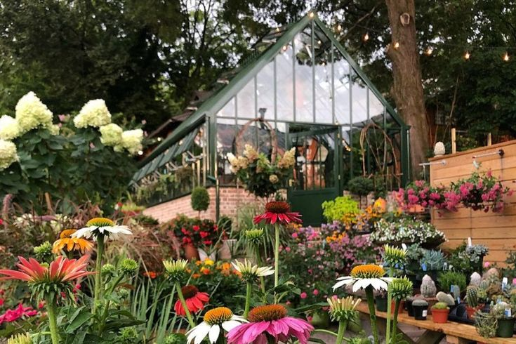 10 Birmingham Flower Shops Nurseries Offering Safe Shopping