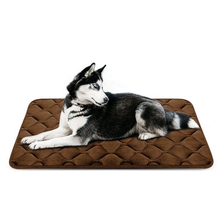 Costco Indestructible Dog Bed