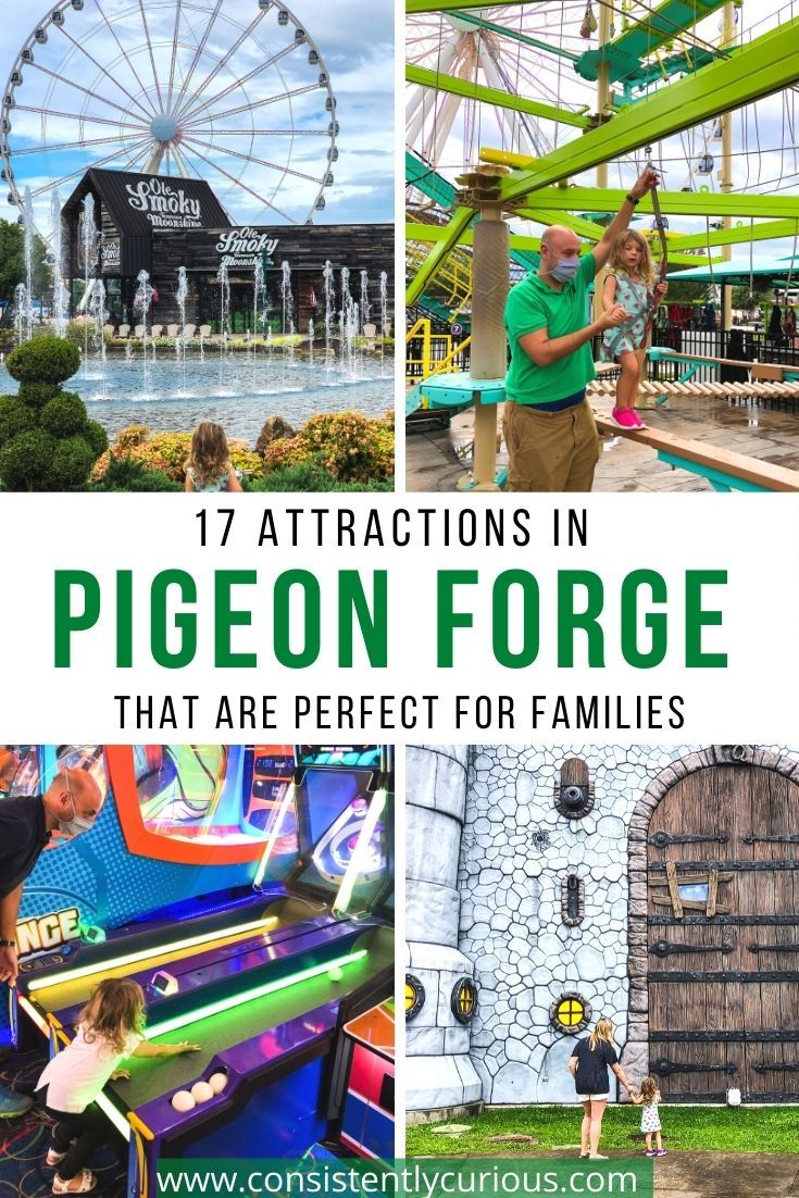 17 Fun Things To Do In Pigeon Forge With Kids Consistently Curious In 2020 Kids Vacation Family Adventure Travel Family Vacations For Adults