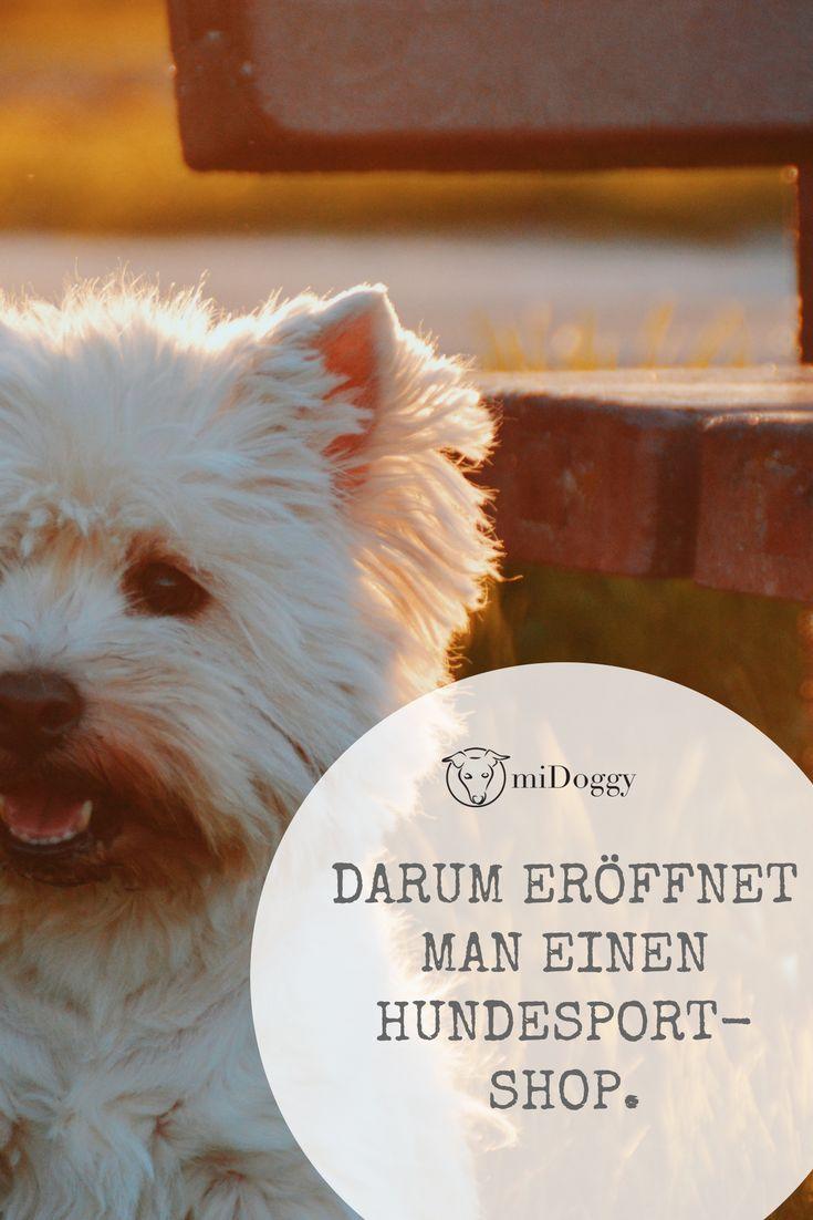 Wie Wir Dazu Kamen Einen Shop Fur Hundesportartikel Zu Eroffnen Hunde Arbeitshunde Hundesport