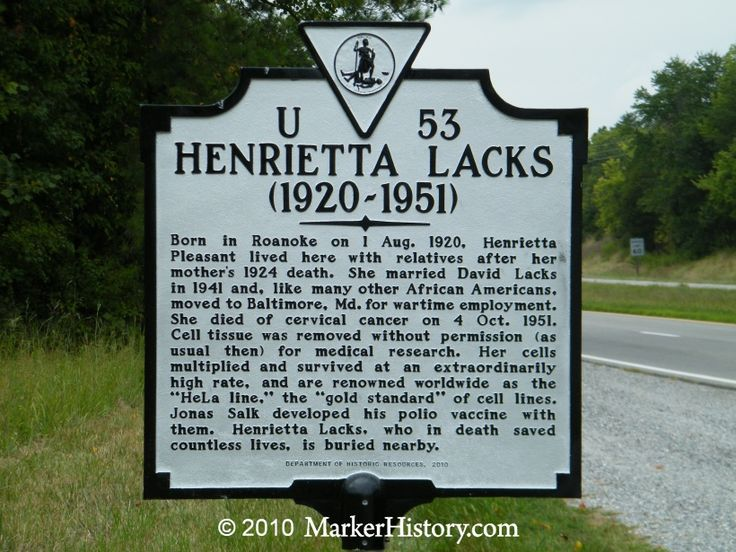 Henrietta Lacks (1920-1951)  The importance of Henrietta Lacks and her contribution to science can neither be exaggerated nor appreciated enough. This woman unbeknownst to herself or her family saved millions of lives without a penny in compensation.