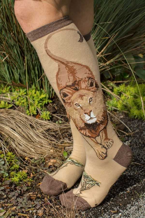 Boss Lion Knee High (If these go out of stock again I have also seen them at modcloth.com)