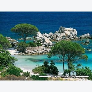 Palombaggia,Corsica. Can get too crowded but still breathtaking.