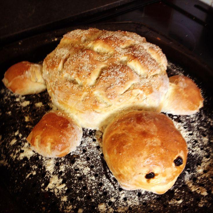 Tortoise bread