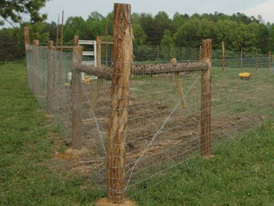 Welded Wire Fence Post Ing Mycoffeepot Org