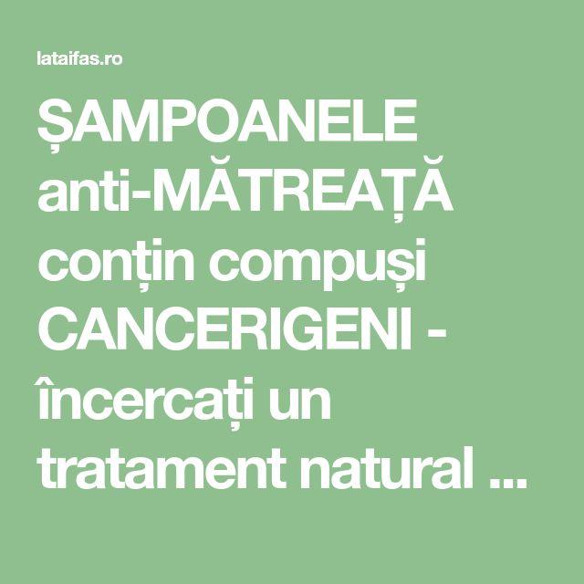 ȘAMPOANELE anti-MĂTREAȚĂ conțin compuși CANCERIGENI - încercați un tratament natural cu MIERE și OȚET   La Taifas